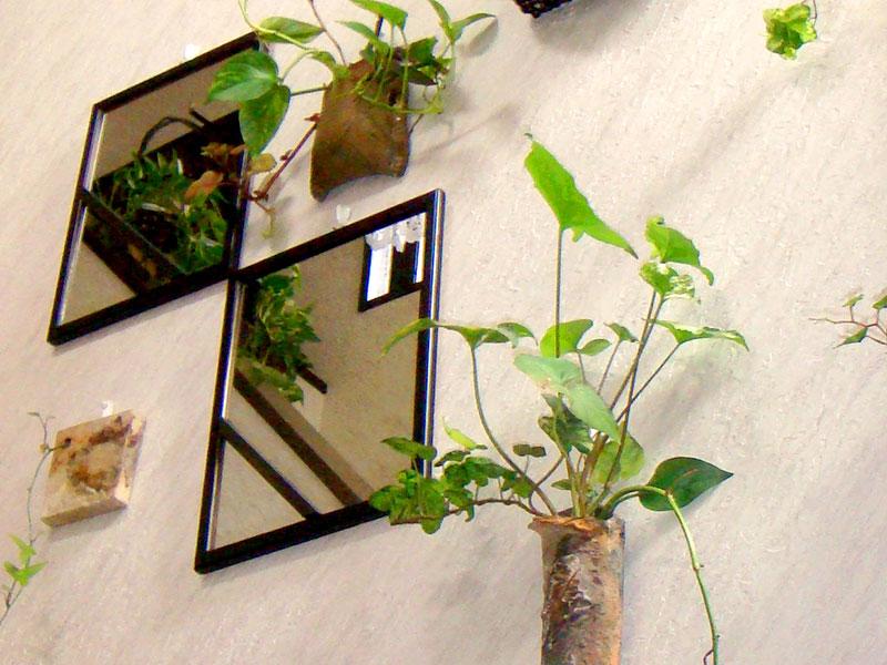 壁にも緑を取り入れ、お洒落な空間に